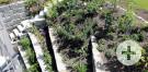 Gefächerte Stützmauer aus Granitblöcken